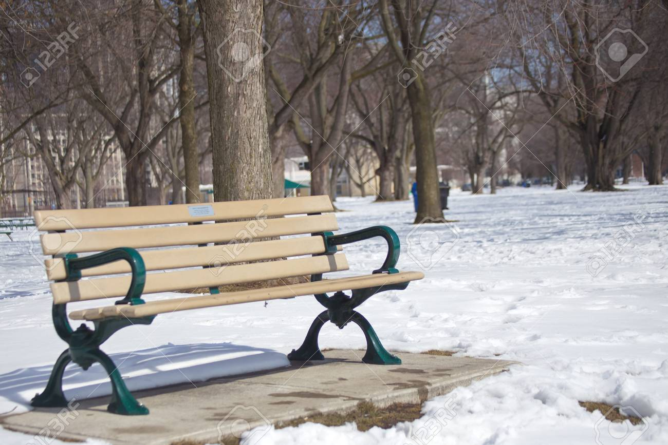 Bench In The Park Toronto Ontario Stock Photo Picture And Royalty