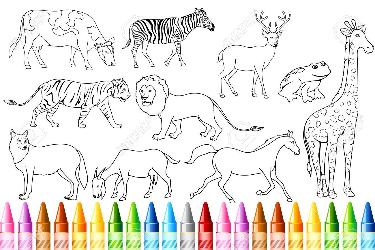 The zoology coloring book - Illustration Of Sketch Of Animal With Colorful Crayon For Color Book Stock Vector 9881962