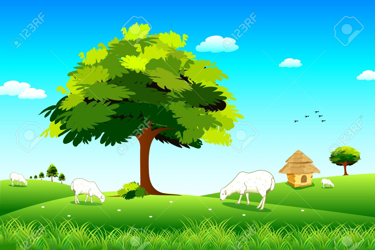 illustration of sheep grazing in grassland in sunny day royalty free rh 123rf com grassland climate biome grassland climate zone