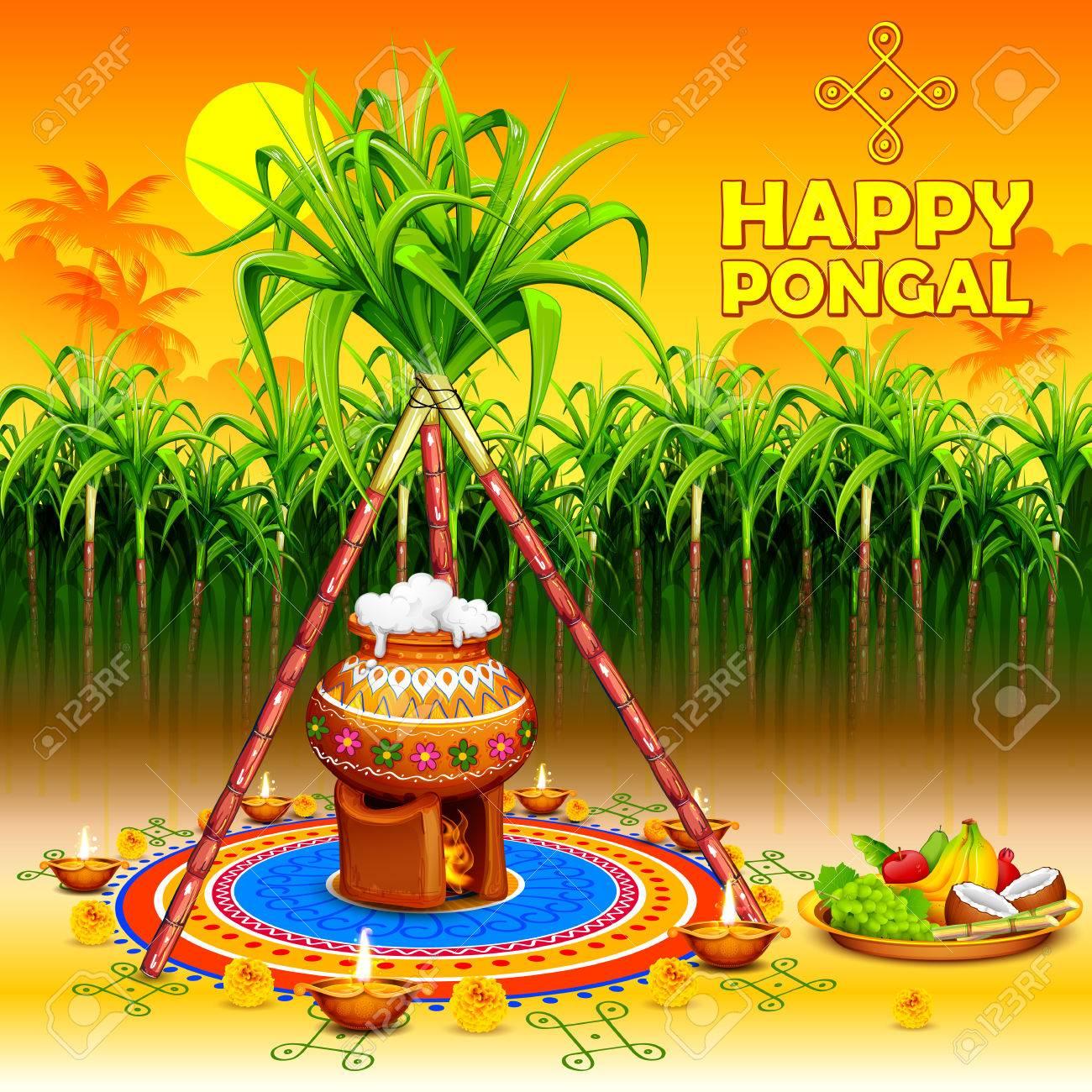 illustration of Happy Pongal greeting background - 68056260
