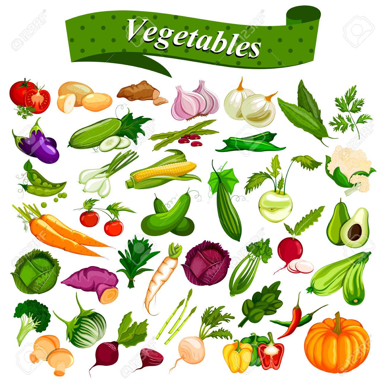Full collection of different types of fresh and healthy vegetables - 75949153