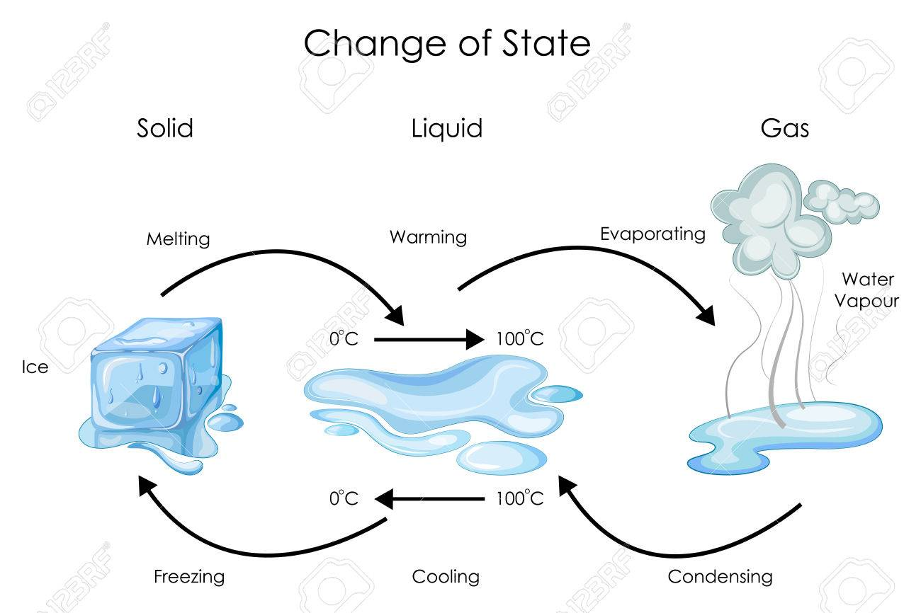 Biology water diagram all kind of wiring diagrams education chart of biology for change of state for water diagram rh 123rf com structural diagrams for biology glycolysis diagram biology ccuart Images