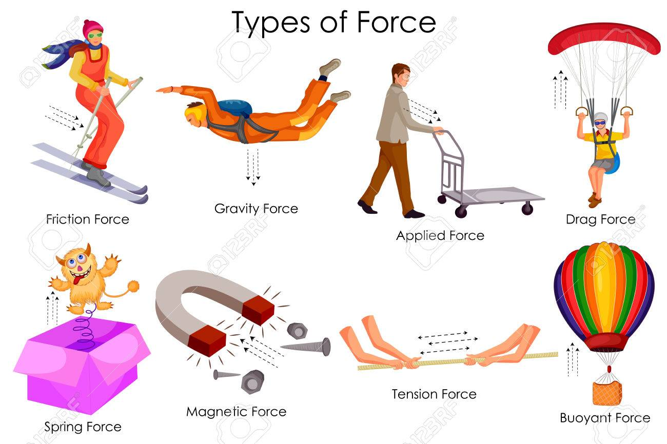 Education Chart Of Physics For Different Types Force Diagram