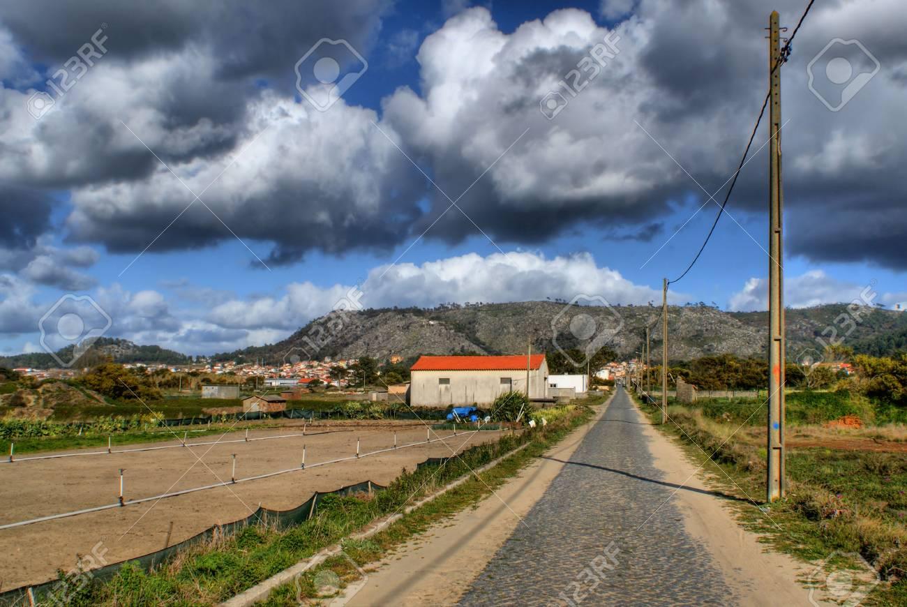 Straight road near the beach in Viana do Castelo, Portugal - 43625126