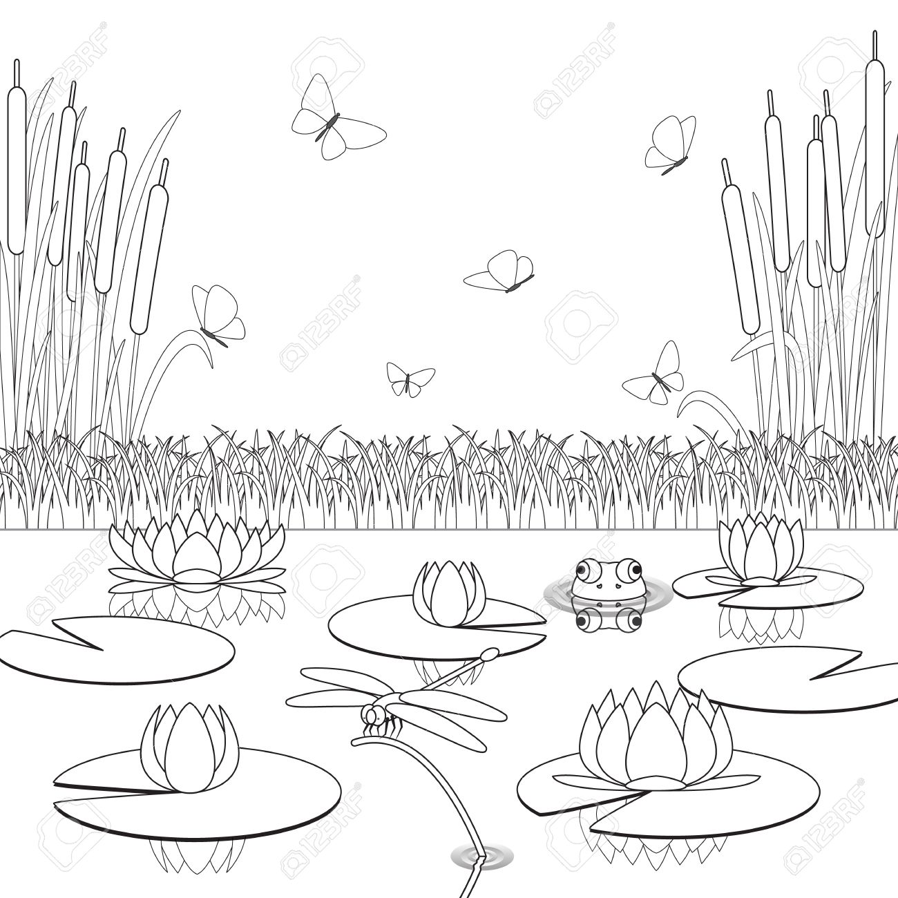 Coloring Page With Pond Inhabitants And Plants. Vector ...