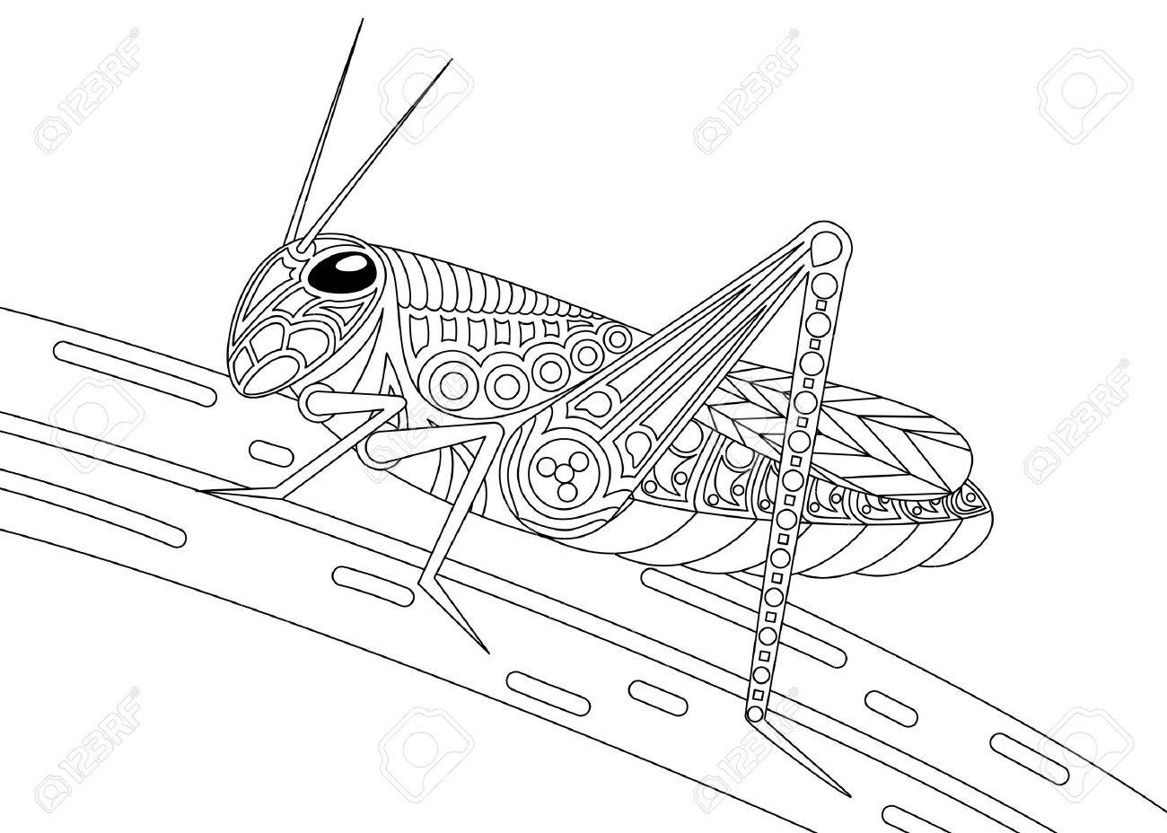 Monochrome Grasshopper Coloring Page Black Over White. Royalty Free ...