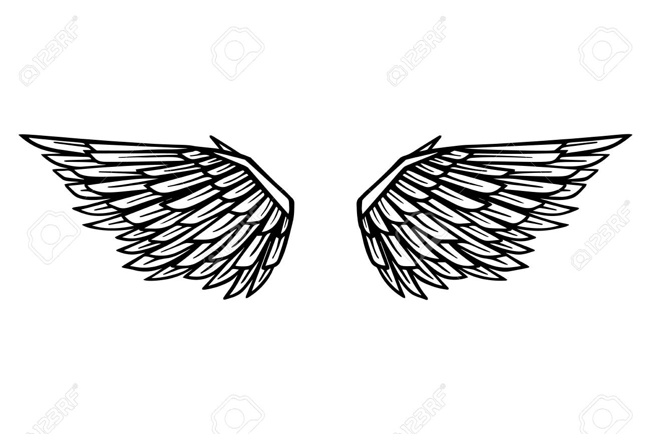 hand drawn eagle wings illustration isolated on white background royalty free cliparts vectors and stock illustration image 108730629 hand drawn eagle wings illustration isolated on white background