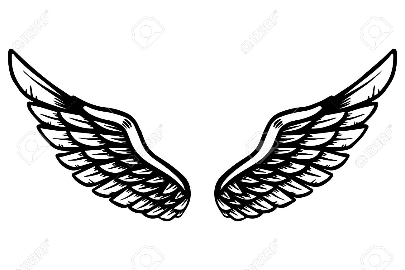 hand drawn eagle wings illustration isolated on white background royalty free cliparts vectors and stock illustration image 108730631 hand drawn eagle wings illustration isolated on white background