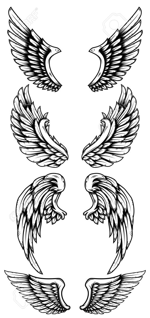 set of eagle wings in tattoo style royalty free cliparts vectors and stock illustration image 127823946 set of eagle wings in tattoo style