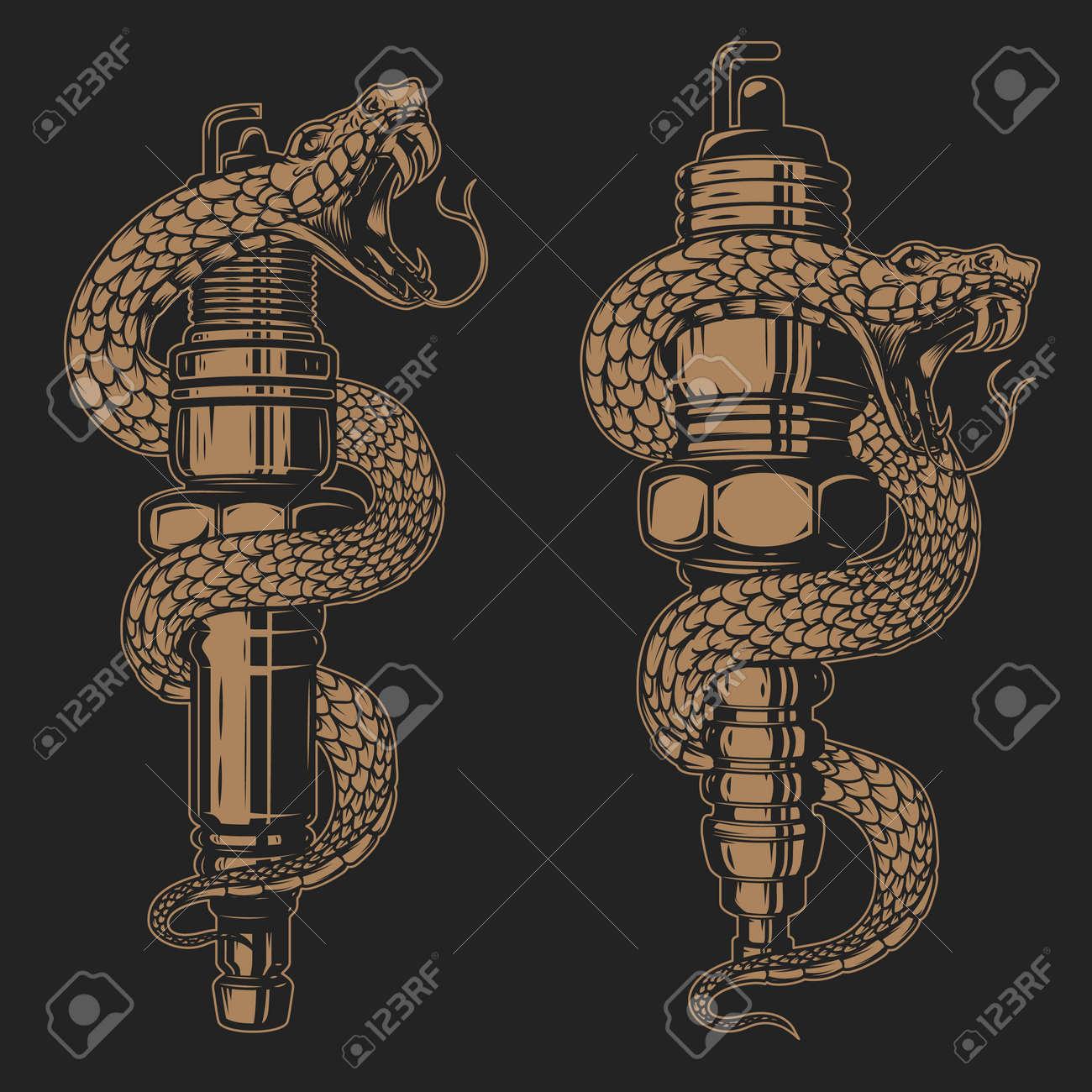 Illustration of snake on car spark plug. Design element for poster, card, banner, sign. Vector illustration - 170554437