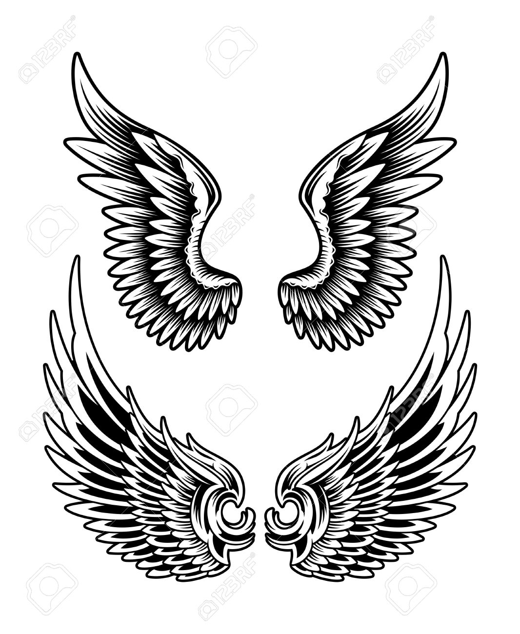 wings spread  editable vector  Eagle Wings Drawing