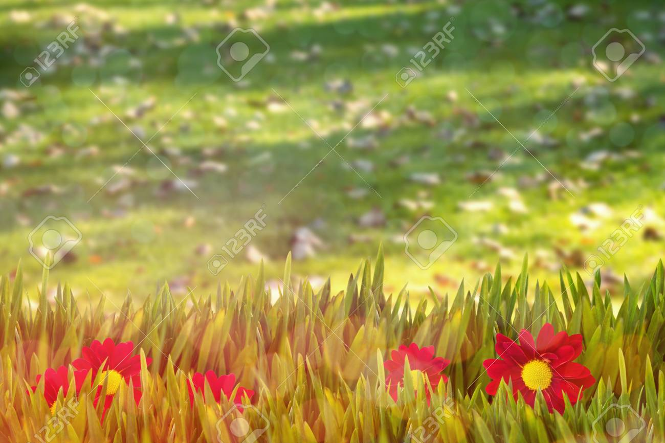 Hermosa Flores Del Arte Del Uña Secos Imagen - Ideas Para Pintar ...