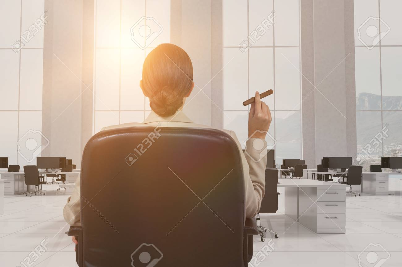 Rear View Of Female Executive Holding Cigar Against Office Furniture Stock  Photo   86524549