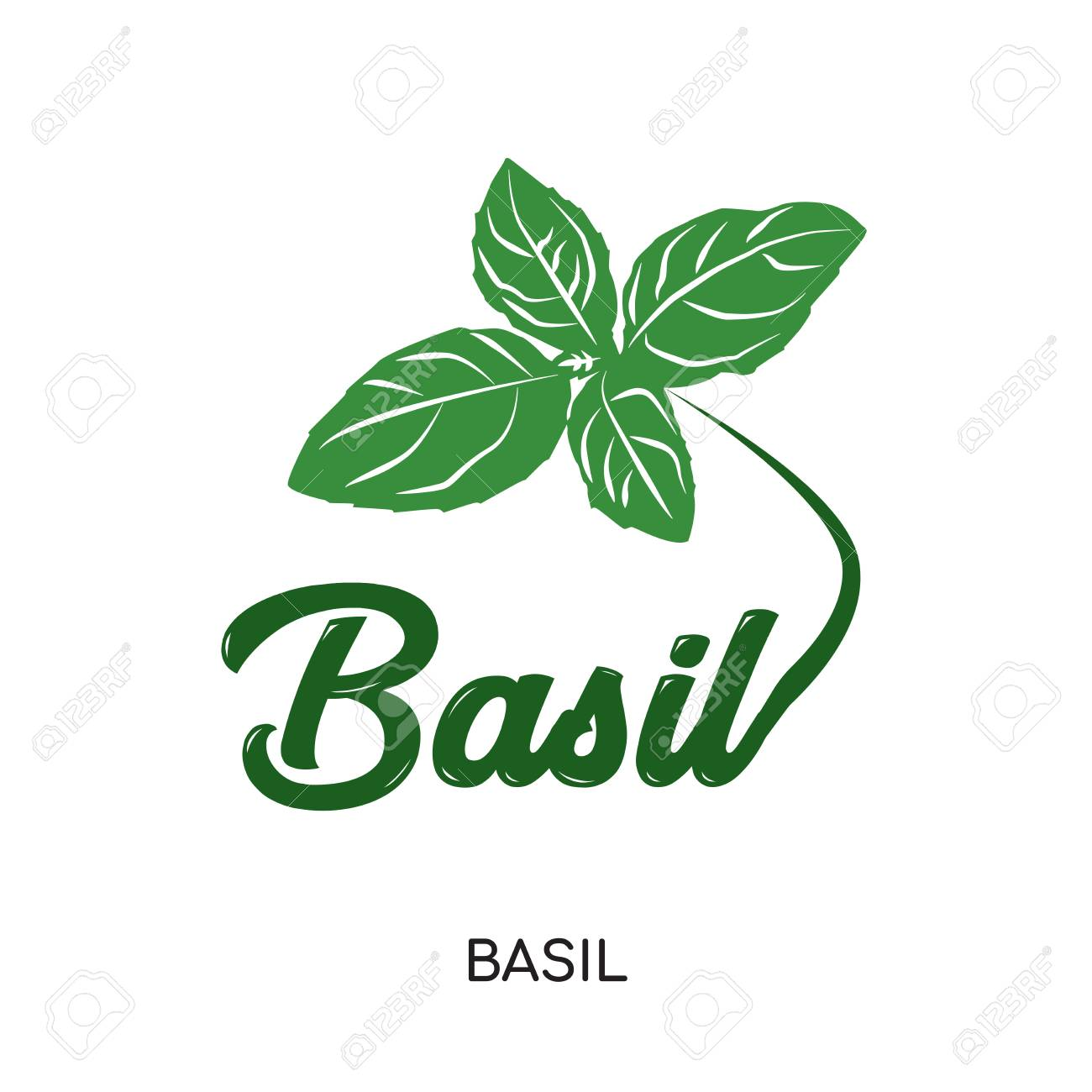 Basil Logo Isolated On White Background For Your Web Mobile