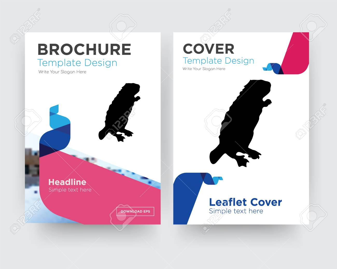 Beaver Brochure Flyer Design Template With Abstract Photo Background