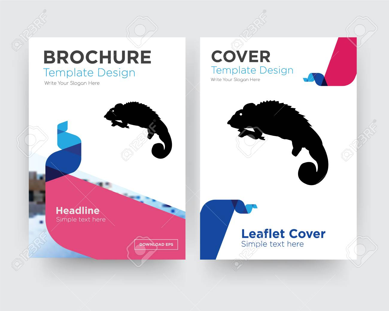 Chameleon Brochure Flyer Design Template With Abstract Photo