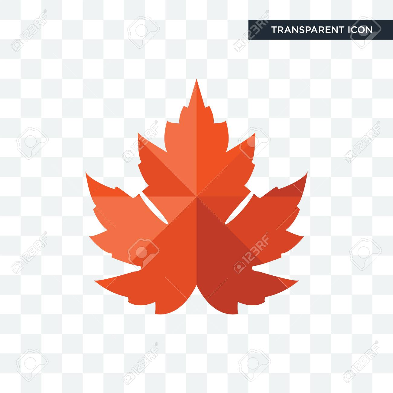 Maple Leaf Vector Icon Isolated On Transparent Background Maple