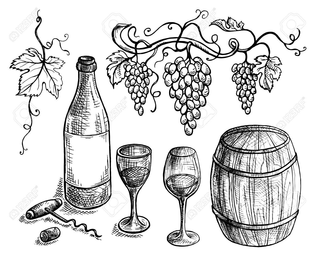 set of wine bottle and barrel and grapes in graphic style hand drawn Gin Grape set of wine bottle and barrel and grapes in graphic style hand drawn vector illustration