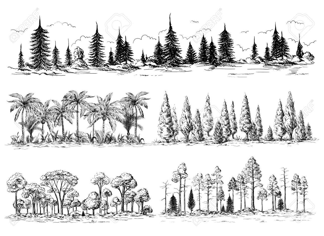 Set Of Different Landscapes With Trees Forest Silhouettes With Royalty Free Cliparts Vectors And Stock Illustration Image 74649291