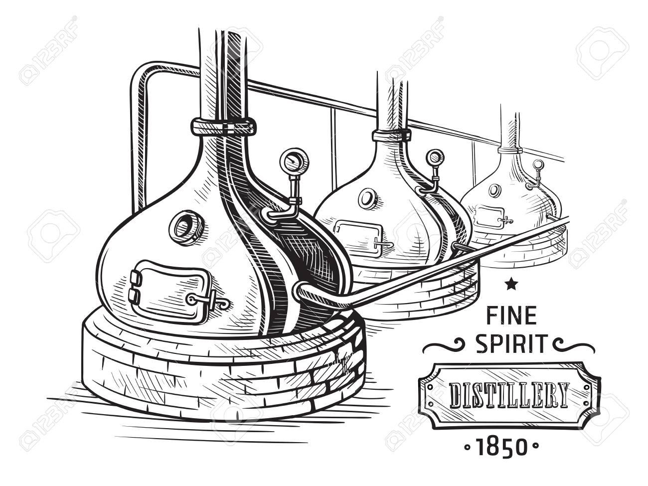 Alembic still for making alcohol inside distillery, distilling spirits sketch. - 98426511