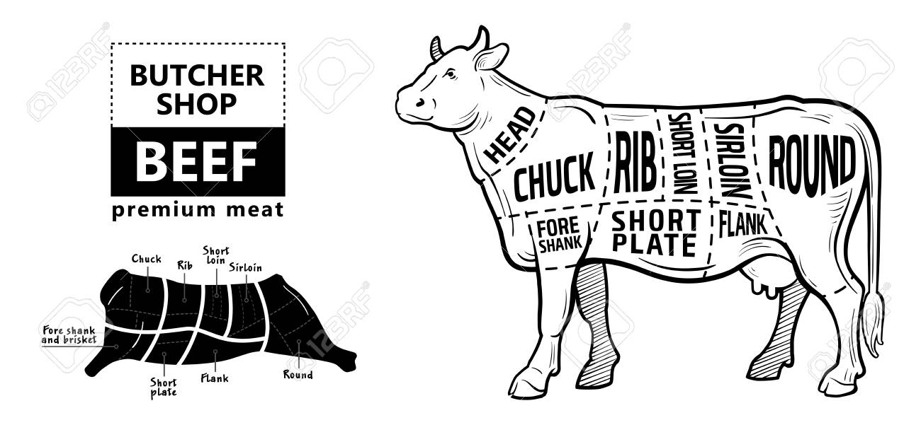 99065327 beef meat part sets for poster butcher diagram on silhouette black with white background illustratio beef meat diagram data wiring diagram blog