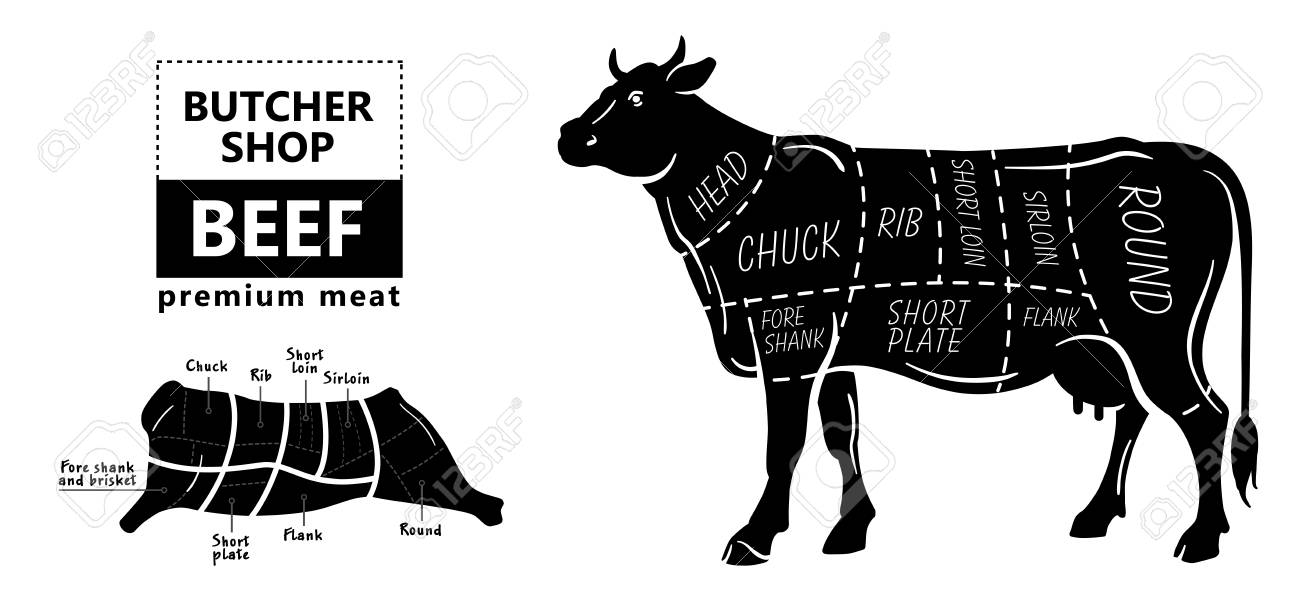 99065330 beef meat part sets for poster butcher diagram on silhouette black with white background illustratio beef meat part sets for poster butcher diagram on silhouette