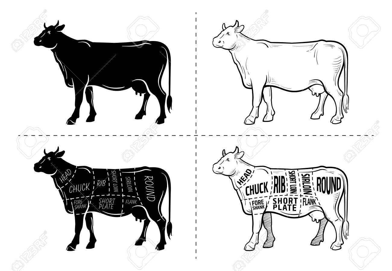 99065341 beef meat part sets for poster butcher diagram on silhouette black with white background illustratio beef meat part sets for poster butcher diagram on silhouette