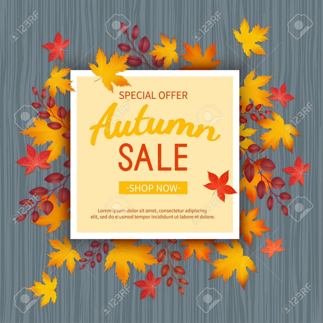 Autumn sale banner. Special seasonal discount offer. leaves at rectangular frame on a wooden table. Vector illustration. Top view - 155410472
