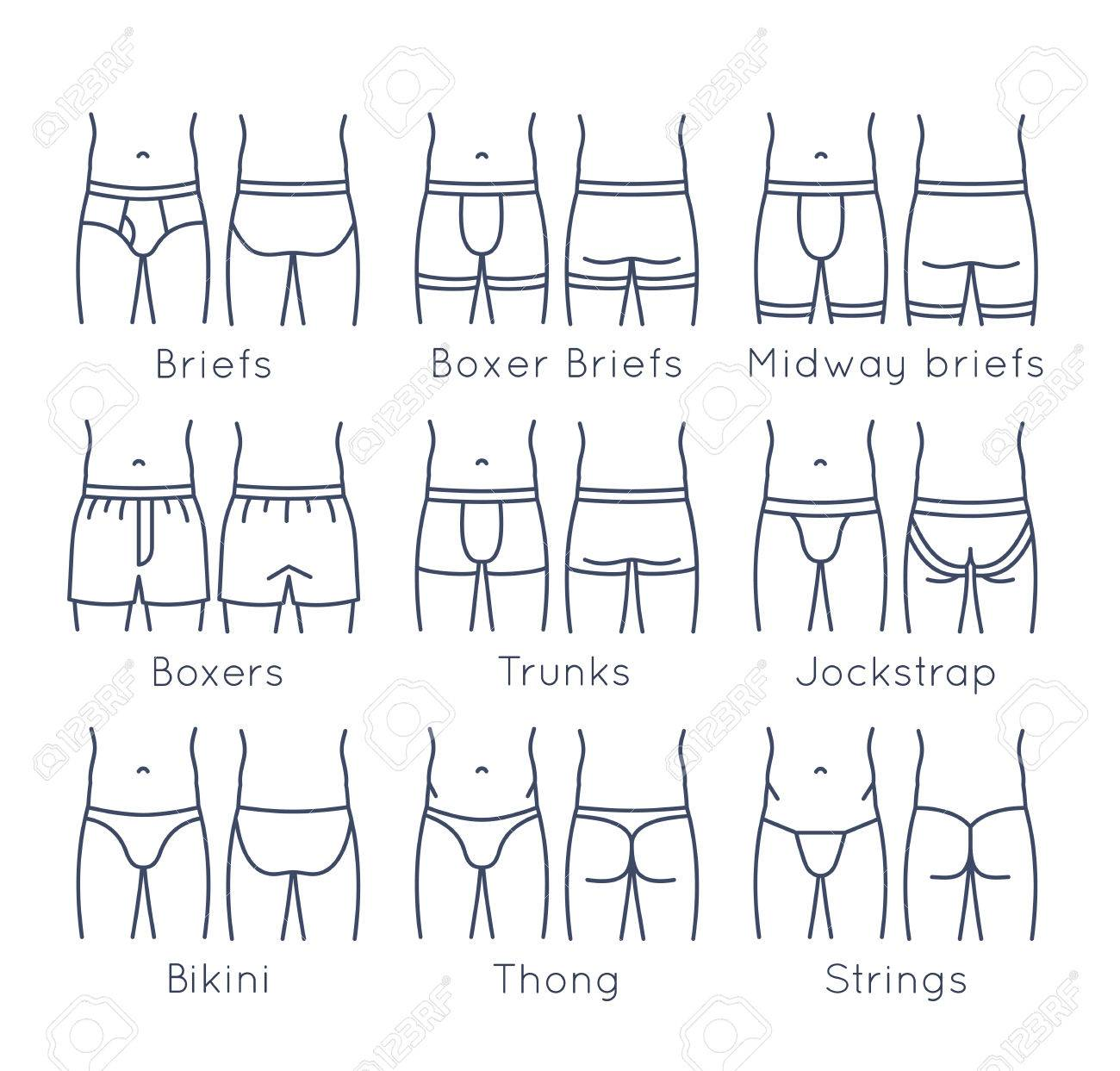 Male underwear types flat line icons set. Modern man briefs fashion styles on torso figures. Front, back view. Underclothes linear infographic design elements. Isolated clothes pictogram - 58596821