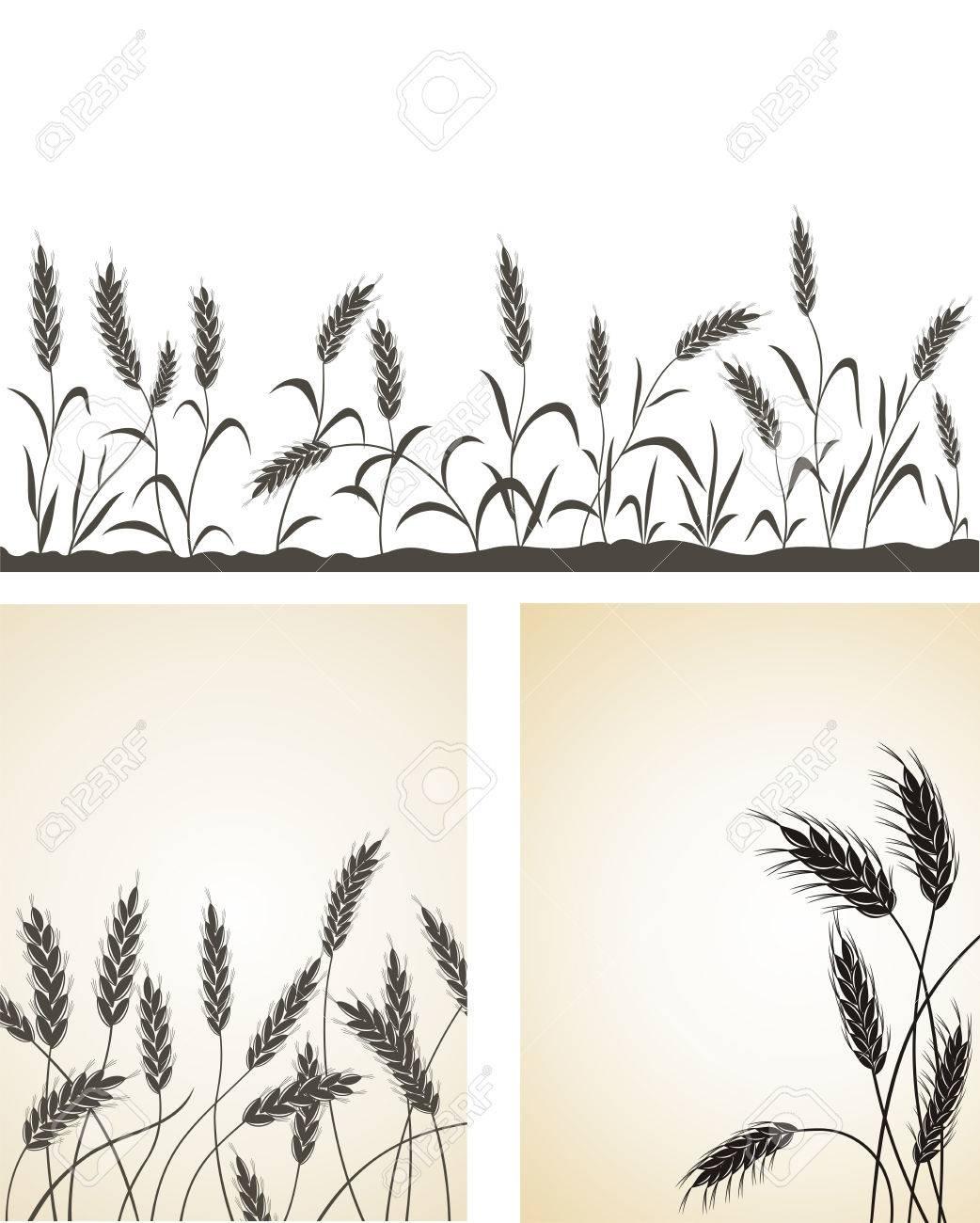 Grain ears. Stock Vector - 8082368