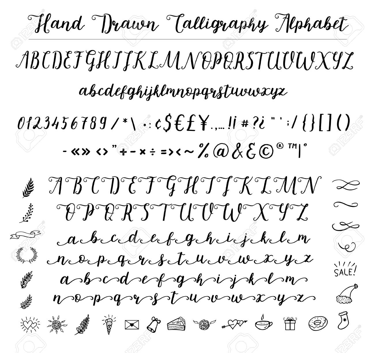 Script font alphabet written with a brush. Vector alphabet. Hand drawn letters, numbers