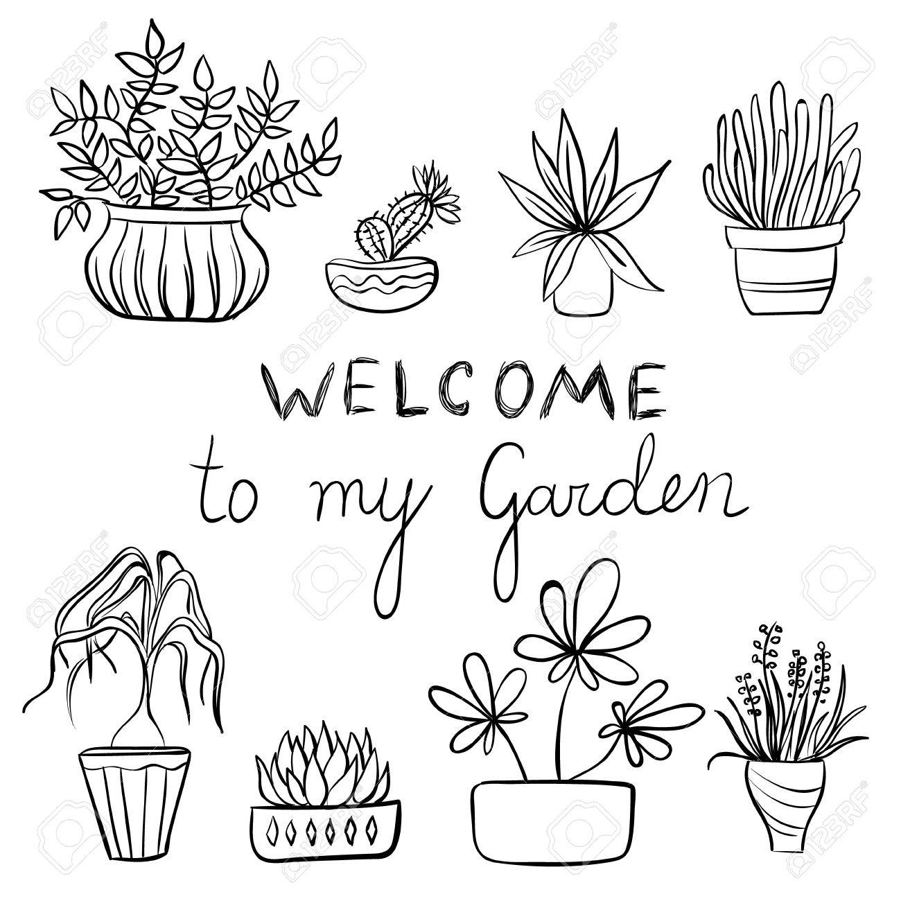 Hand Drawing Set Of Pot Plants With Flowers And Leaves Gardening Illustration Text Stock