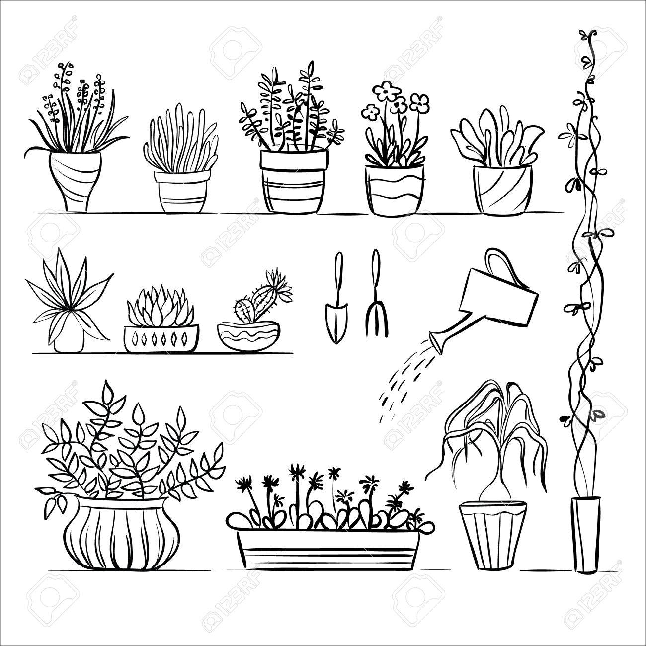 Pot Plants And Tools Sketch Hand Drawing Set Royalty Free Cliparts Vectors And Stock Illustration Image 42171491