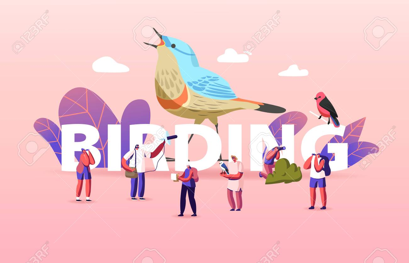 Birding Concept. Group of Friends Characters Camping and Hiking Using Binoculars Watching Bird - 148040362