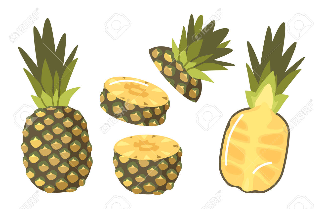 Set of Pineapples, Tropical Plant Whole, Half and Sliced Natural Exotic Fruit with Juicy Pulp. Healthy Organic Product - 171857241