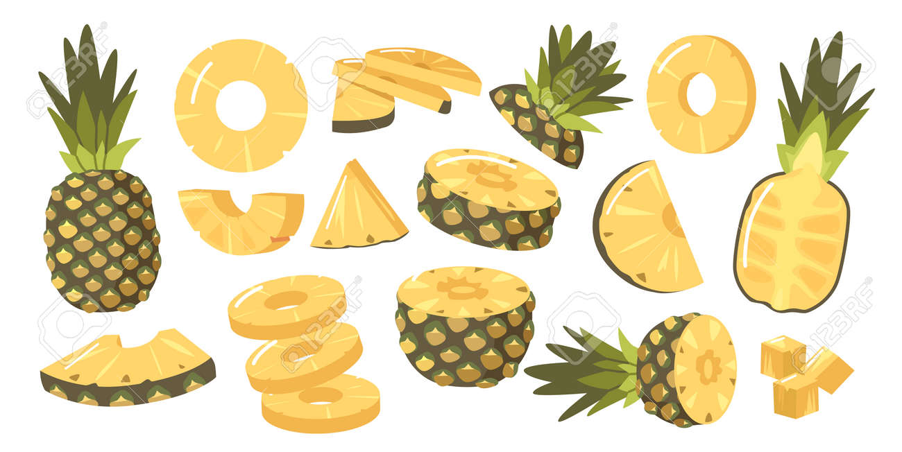 Set of Pineapples, Ripe Healthy Organic Product Design Elements, Fresh Tropical Plant. Whole, Half and Sliced Fruits - 171857177
