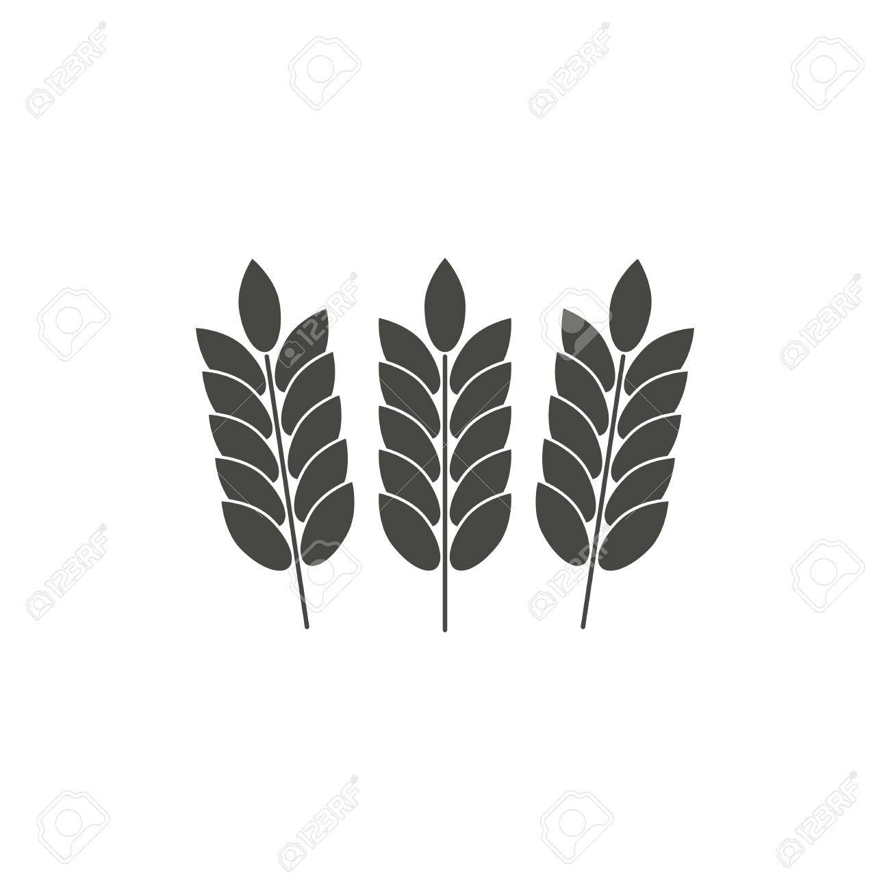 barley vector icon in black on a white background royalty free rh 123rf com barley vector free vector barley and hops