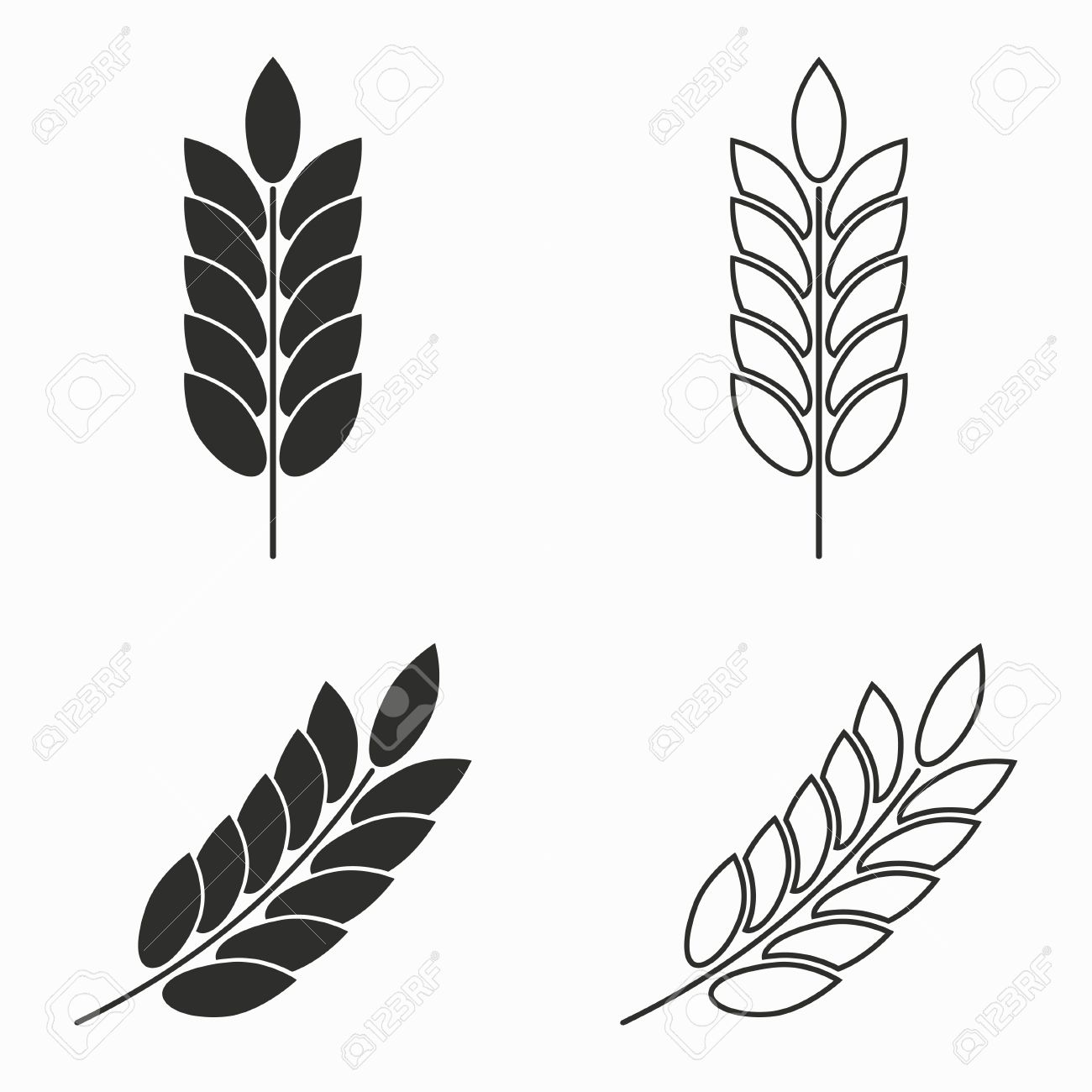 barley vector icons set black illustration isolated on white rh 123rf com barley vector art barley vector png