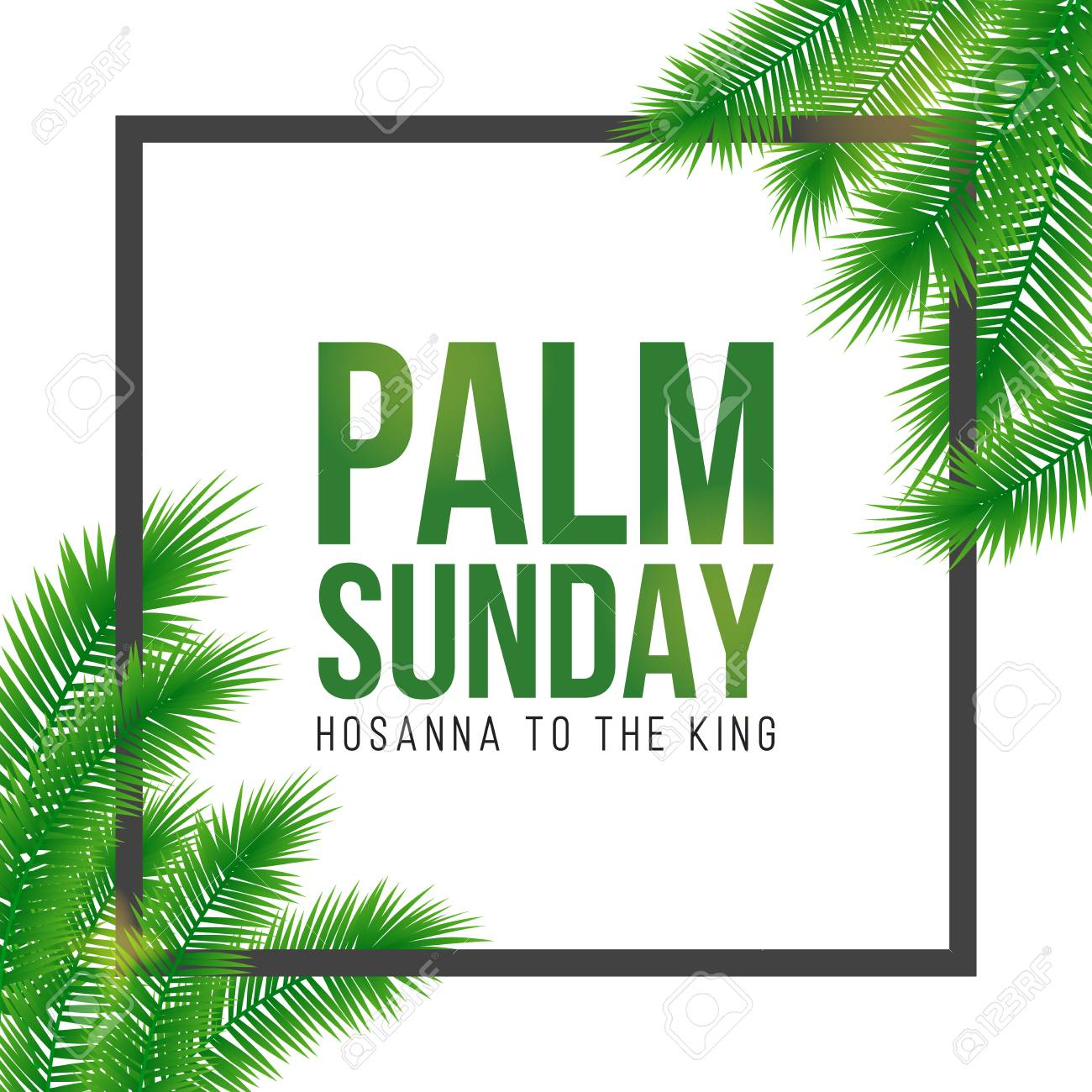 Palm Sunday holiday card, poster with realistick palm leaves border, frame. Vector background. - 94102347
