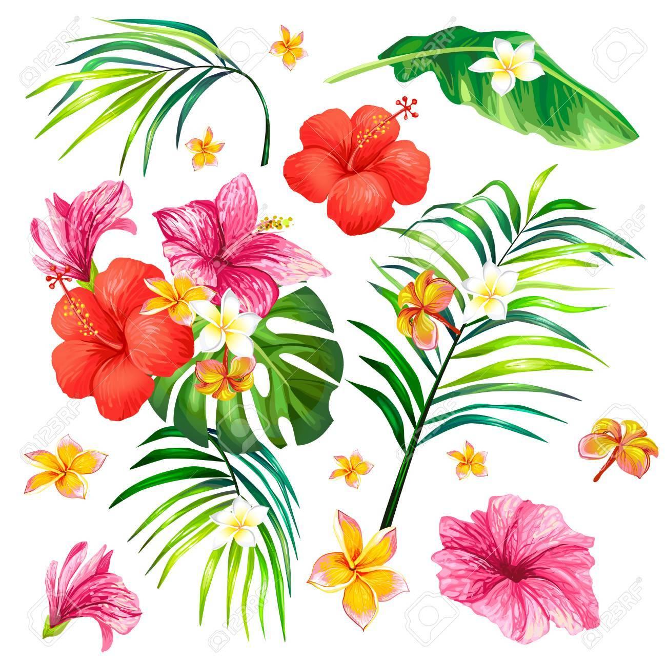 Fantástico Diseño De Uñas De Flores De Hibisco Colección - Ideas ...