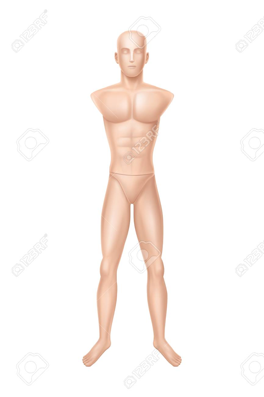 vector 3d realistic male mannequin full body without hands
