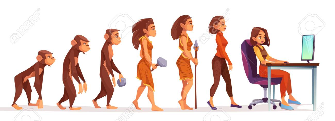 Human evolution from monkey to freelancer woman, time line Female character evolve steps from ape to uprights homo sapiens to girl at computer isolated on white background. Cartoon vector illustration - 133026009