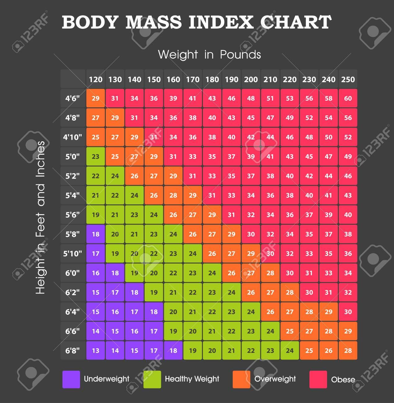 Body Mass Index Chart   Höhe Ein Gewicht Infografik Lizenzfrei ...