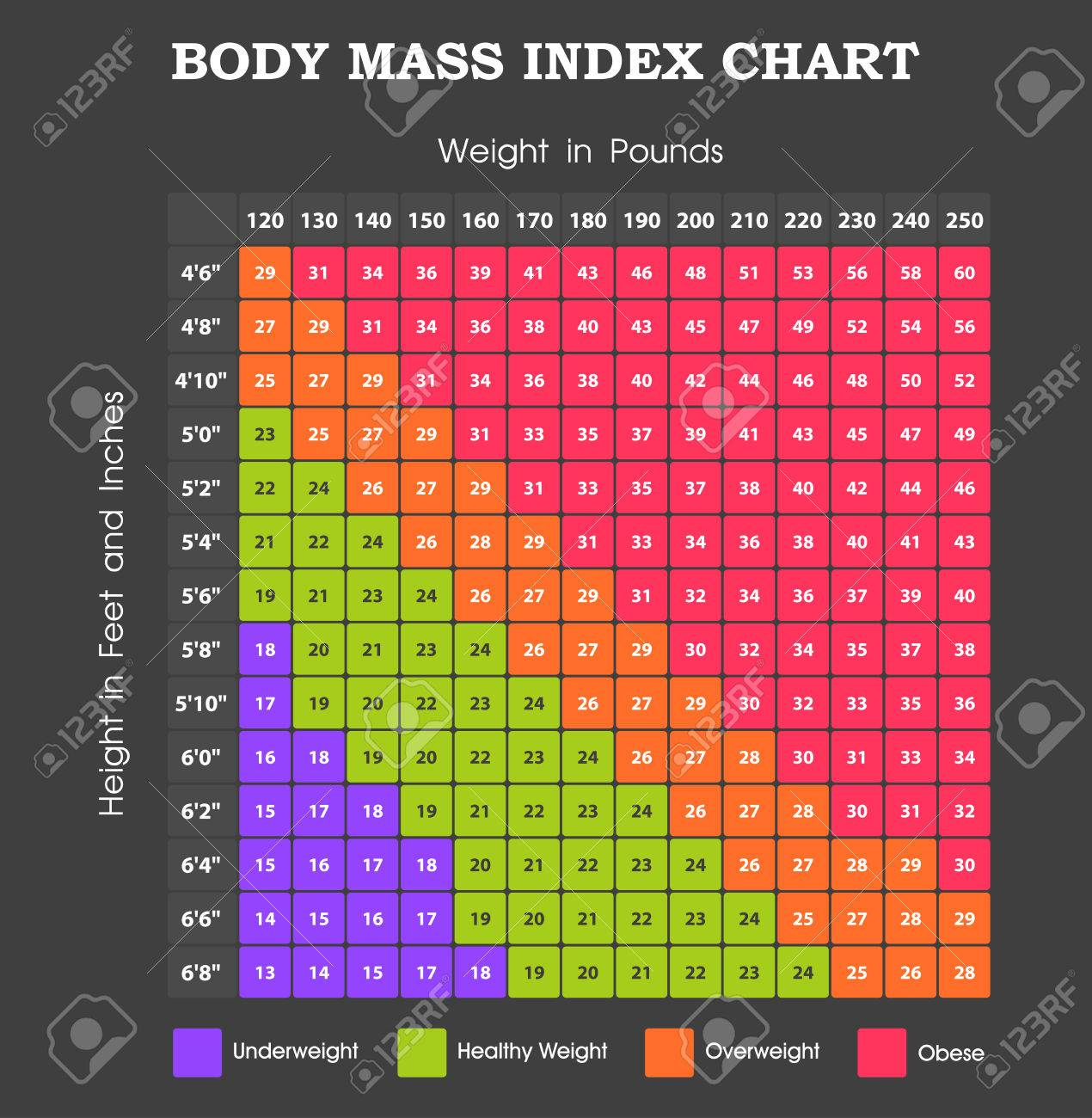 Body mass index chart height an weight infographic royalty free body mass index chart height an weight infographic stock vector 57528359 geenschuldenfo Gallery