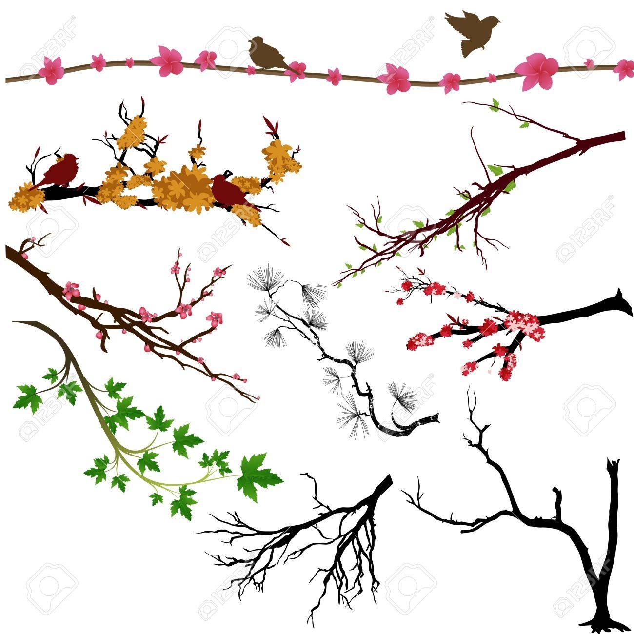 Branches Vectors - 15142720