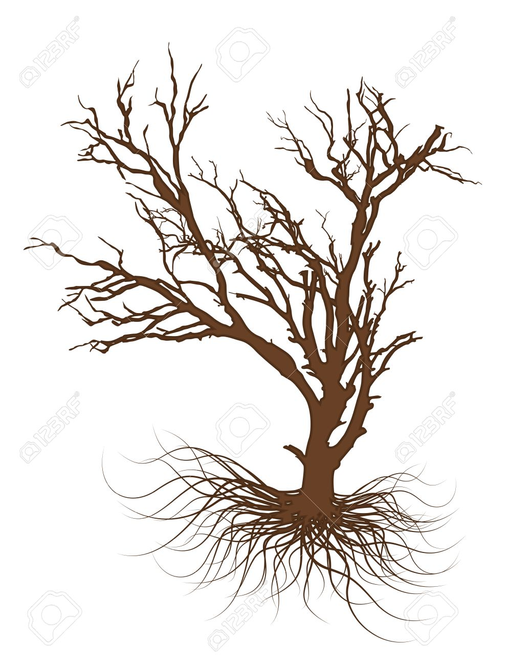 Drawing Of Dead Tree Royalty Free Cliparts Vectors And Stock Illustration Image 36251718