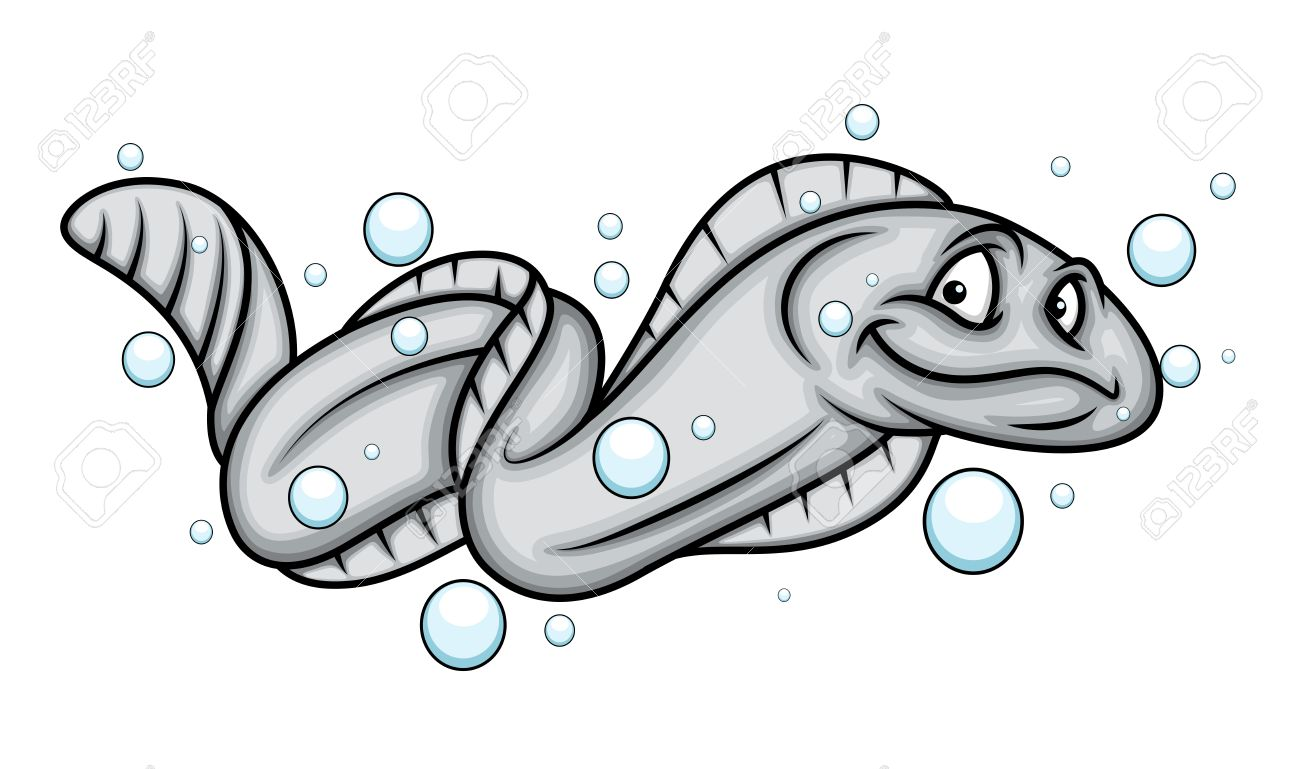 electric eel images u0026 stock pictures royalty free electric eel
