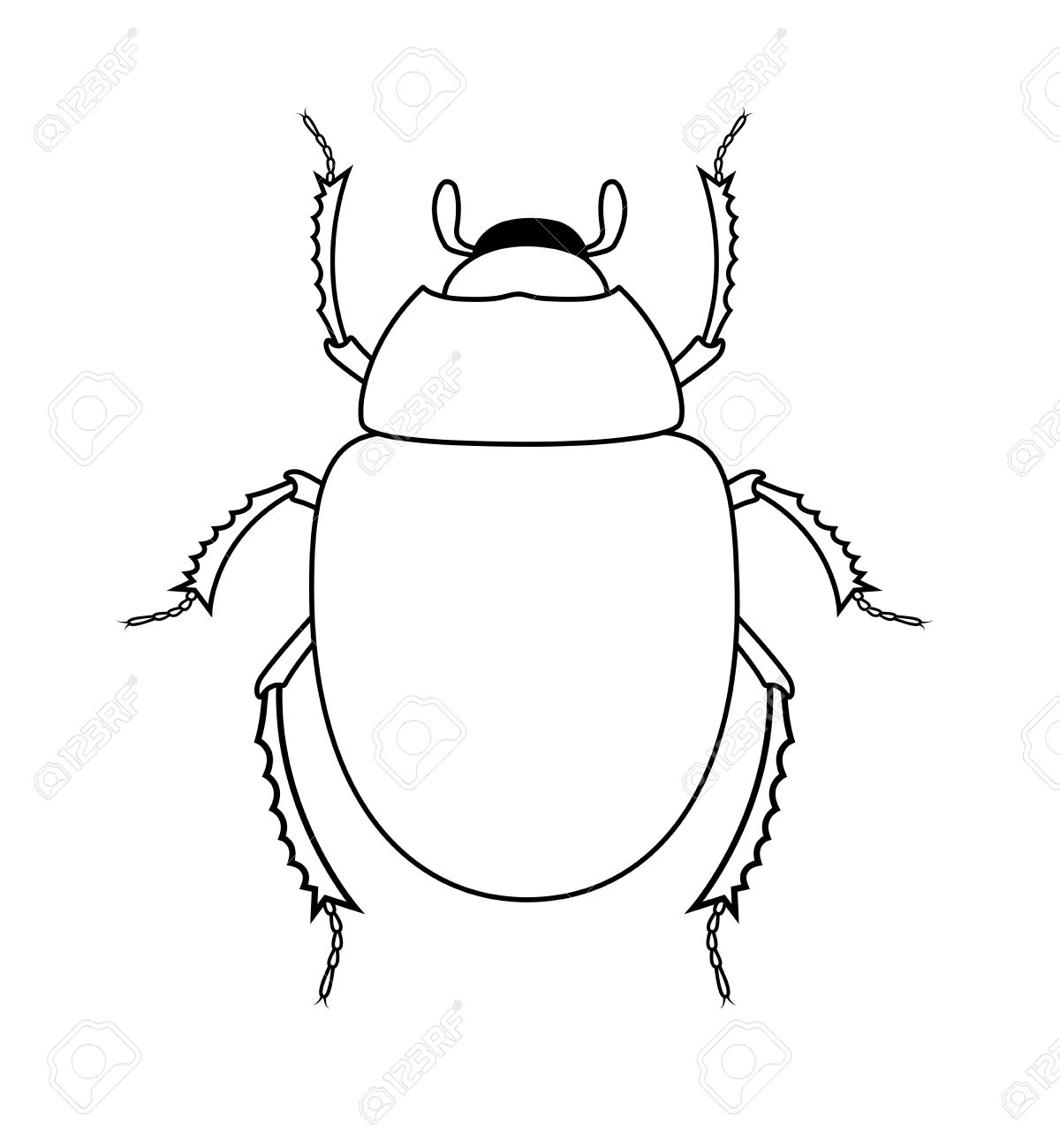 drawing art of scarab beetle insect royalty free cliparts vectors
