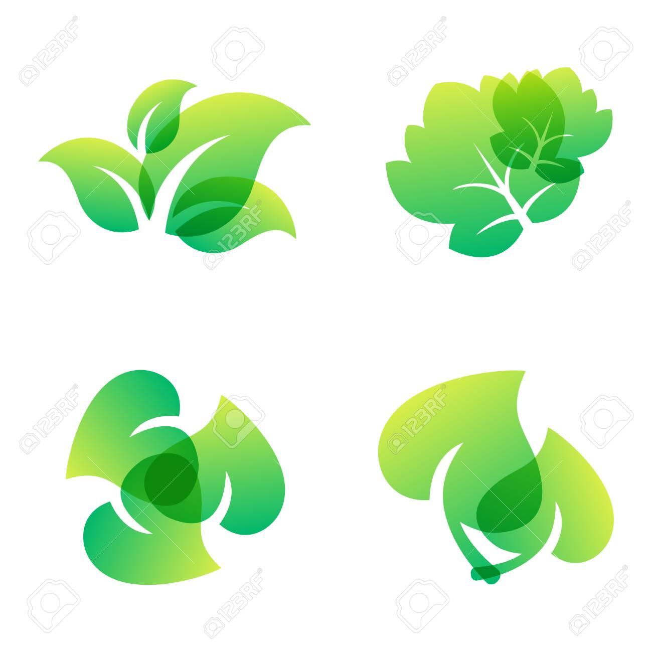 Green Leaf Eco Design Element Icon Leaf Icon Vector Illustration