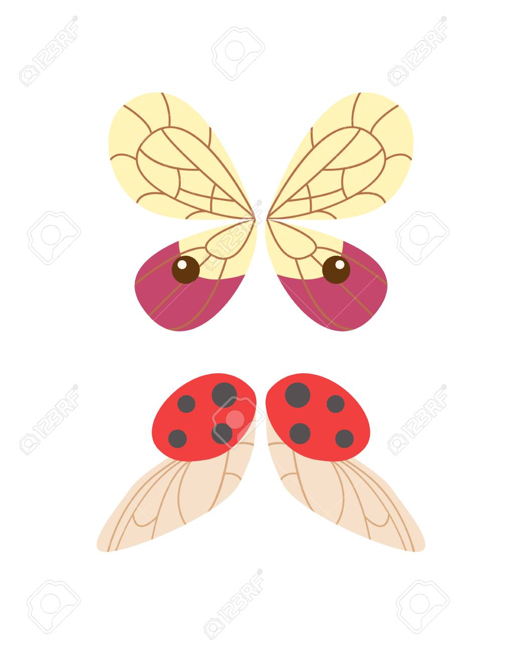 Ungewöhnlich Die Anatomie Eines Schmetterlings Fotos - Menschliche ...